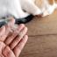 У кота выпадает шерсть: виды облысения и меры профилактики