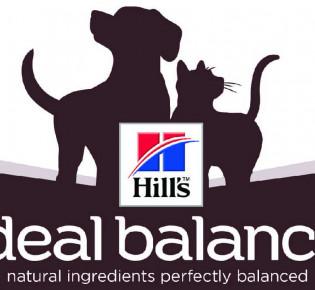 Hills корм для кошек: состав, виды, как выбрать?