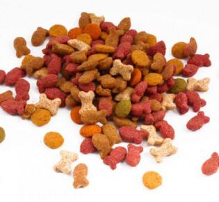 Acana корм для кошек: особенности, виды, выбор